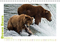 Brown Bears 2019 UK-Version (Wall Calendar 2019 DIN A4 Landscape) - Produktdetailbild 11
