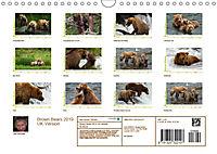 Brown Bears 2019 UK-Version (Wall Calendar 2019 DIN A4 Landscape) - Produktdetailbild 13