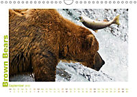 Brown Bears 2019 UK-Version (Wall Calendar 2019 DIN A4 Landscape) - Produktdetailbild 9