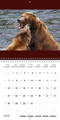 Brown Bears in the wild (Wall Calendar 2019 300 × 300 mm Square) - Produktdetailbild 10
