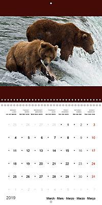 Brown Bears in the wild (Wall Calendar 2019 300 × 300 mm Square) - Produktdetailbild 3