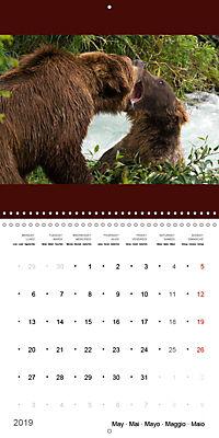 Brown Bears in the wild (Wall Calendar 2019 300 × 300 mm Square) - Produktdetailbild 5
