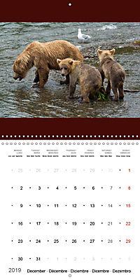 Brown Bears in the wild (Wall Calendar 2019 300 × 300 mm Square) - Produktdetailbild 12