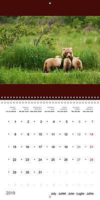 Brown Bears in the wild (Wall Calendar 2019 300 × 300 mm Square) - Produktdetailbild 7