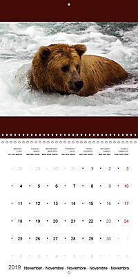 Brown Bears in the wild (Wall Calendar 2019 300 × 300 mm Square) - Produktdetailbild 11