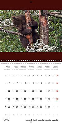 Brown Bears in the wild (Wall Calendar 2019 300 × 300 mm Square) - Produktdetailbild 8