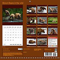 Brown Bears in the wild (Wall Calendar 2019 300 × 300 mm Square) - Produktdetailbild 13