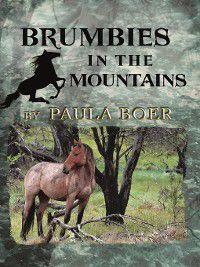 Brumbies: Brumbies in the Mountains, Paula Boer