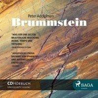 Brummstein, 1 Audio-CD, Peter Adolphsen