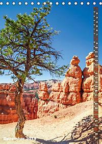 BRYCE CANYON Natur Pur (Tischkalender 2019 DIN A5 hoch) - Produktdetailbild 12