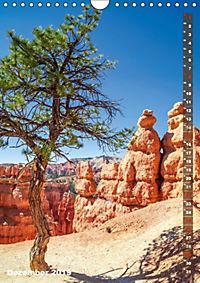 BRYCE CANYON Natur Pur (Wandkalender 2019 DIN A4 hoch) - Produktdetailbild 12