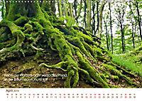 Buddhistische Weisheiten 2019. Sprichwörter in Bildern (Wandkalender 2019 DIN A3 quer) - Produktdetailbild 4