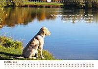 Buddhistische Weisheiten 2019. Sprichwörter in Bildern (Wandkalender 2019 DIN A3 quer) - Produktdetailbild 10