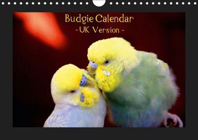 Budgie Calendar - UK Version (Wall Calendar 2019 DIN A4 Landscape), Björn Bergmann