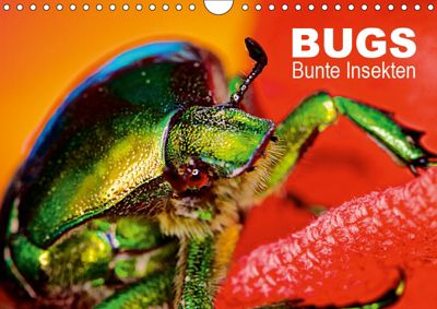 BUGS, Bunte Insekten (Wandkalender 2019 DIN A4 quer), Hannes Bertolini