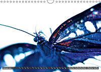 BUGS, Bunte Insekten (Wandkalender 2019 DIN A4 quer) - Produktdetailbild 1