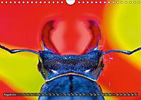 BUGS, Bunte Insekten (Wandkalender 2019 DIN A4 quer) - Produktdetailbild 8