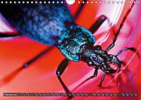 BUGS, Bunte Insekten (Wandkalender 2019 DIN A4 quer) - Produktdetailbild 2