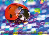 BUGS, Bunte Insekten (Wandkalender 2019 DIN A4 quer) - Produktdetailbild 3