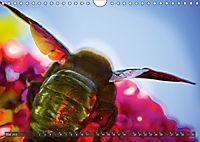 BUGS, Bunte Insekten (Wandkalender 2019 DIN A4 quer) - Produktdetailbild 5