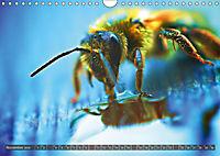 BUGS, Bunte Insekten (Wandkalender 2019 DIN A4 quer) - Produktdetailbild 11