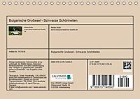 Bulgarische Großesel - Schwarze Schönheiten (Tischkalender 2019 DIN A5 quer) - Produktdetailbild 13