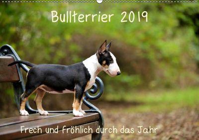 Bullterrier 2019 Frech und fröhlich durch das Jahr (Wandkalender 2019 DIN A2 quer), Yvonne Janetzek