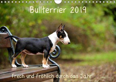 Bullterrier 2019 Frech und fröhlich durch das Jahr (Wandkalender 2019 DIN A4 quer), Yvonne Janetzek