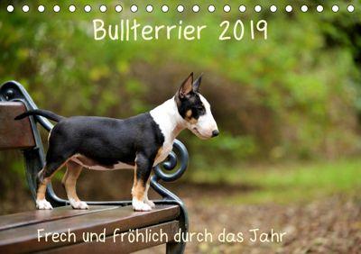 Bullterrier 2019 Frech und fröhlich durch das Jahr (Tischkalender 2019 DIN A5 quer), Yvonne Janetzek