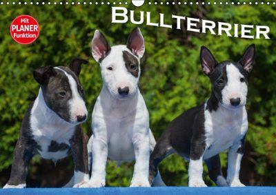 Bullterrier (Wandkalender 2019 DIN A3 quer), Bullterrier