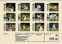 Bullterrier (Wandkalender 2019 DIN A3 quer) - Produktdetailbild 13