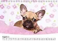 Bullys - Französische Bulldoggen 2019 (Tischkalender 2019 DIN A5 quer) - Produktdetailbild 8