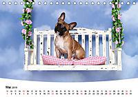 Bullys - Französische Bulldoggen 2019 (Tischkalender 2019 DIN A5 quer) - Produktdetailbild 5