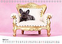 Bullys - Französische Bulldoggen 2019 (Tischkalender 2019 DIN A5 quer) - Produktdetailbild 4