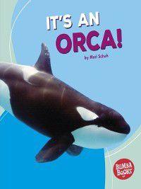 Bumba Books ™ — Polar Animals: It's an Orca!, Mari Schuh