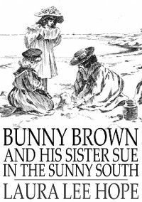 Bunny Brown and His Sister Sue in the Sunny South, Laura Lee Hope