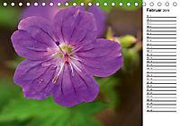 Bunte Flora des Kraichgaus (Tischkalender 2019 DIN A5 quer) - Produktdetailbild 2