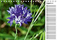 Bunte Flora des Kraichgaus (Tischkalender 2019 DIN A5 quer) - Produktdetailbild 8