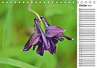 Bunte Flora des Kraichgaus (Tischkalender 2019 DIN A5 quer) - Produktdetailbild 10