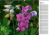 Bunte Flora des Kraichgaus (Wandkalender 2019 DIN A2 quer) - Produktdetailbild 5