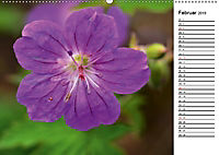 Bunte Flora des Kraichgaus (Wandkalender 2019 DIN A2 quer) - Produktdetailbild 2