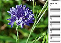 Bunte Flora des Kraichgaus (Wandkalender 2019 DIN A2 quer) - Produktdetailbild 8