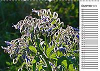 Bunte Flora des Kraichgaus (Wandkalender 2019 DIN A2 quer) - Produktdetailbild 12