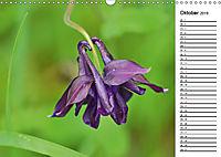 Bunte Flora des Kraichgaus (Wandkalender 2019 DIN A3 quer) - Produktdetailbild 10