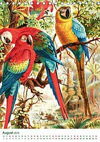 Bunte Welt der Vögel nach Alfred Brehm (Tischkalender 2019 DIN A5 hoch) - Produktdetailbild 3