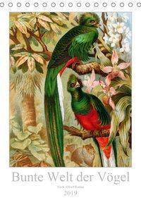 Bunte Welt der Vögel nach Alfred Brehm (Tischkalender 2019 DIN A5 hoch), k.A. Tunabooks/olf