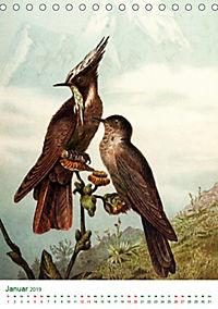 Bunte Welt der Vögel nach Alfred Brehm (Tischkalender 2019 DIN A5 hoch) - Produktdetailbild 1