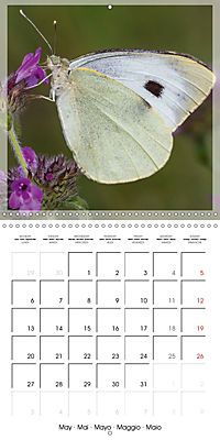 Butterflies Beauty of Nature (Wall Calendar 2019 300 × 300 mm Square) - Produktdetailbild 5