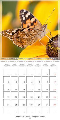 Butterflies Beauty of Nature (Wall Calendar 2019 300 × 300 mm Square) - Produktdetailbild 6