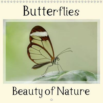 Butterflies Beauty of Nature (Wall Calendar 2019 300 × 300 mm Square), Marion Maurer